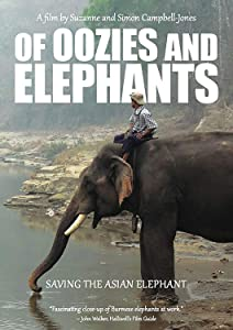 Movie notebook watch Of Oozies and Elephants by none [320x240]