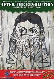 Después del Zapatismo Poster