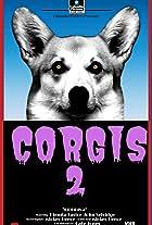 Corgis 2