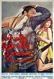 Novelle galeotte d'amore Poster