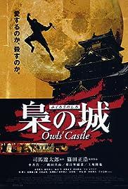 Owls' Castle Poster