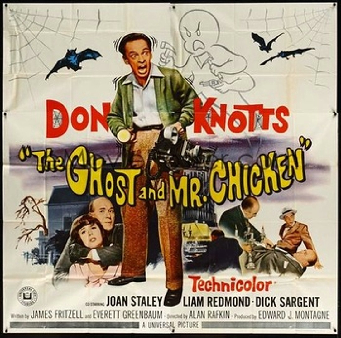 Image result for The Ghost & Mr Chicken