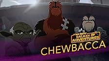Chewbacca - Wookiee Warrior