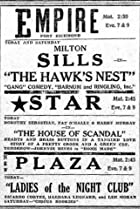 The Hawk's Nest (1928) Poster