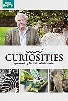 Natural Curiosities