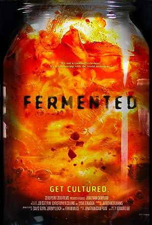Where to stream Fermented