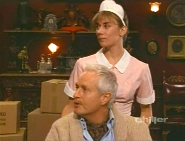 Robert Dowdell and Laura Austin in Freddy's Nightmares (1988)