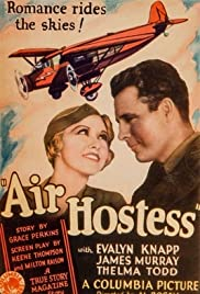 Air Hostess Poster