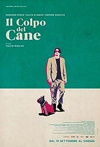 Primary photo for Il colpo del cane