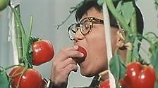 Tomato Hatake no Daimaô