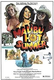 Malibu Hot Summer Poster