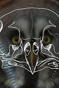 Owl Power (2015)