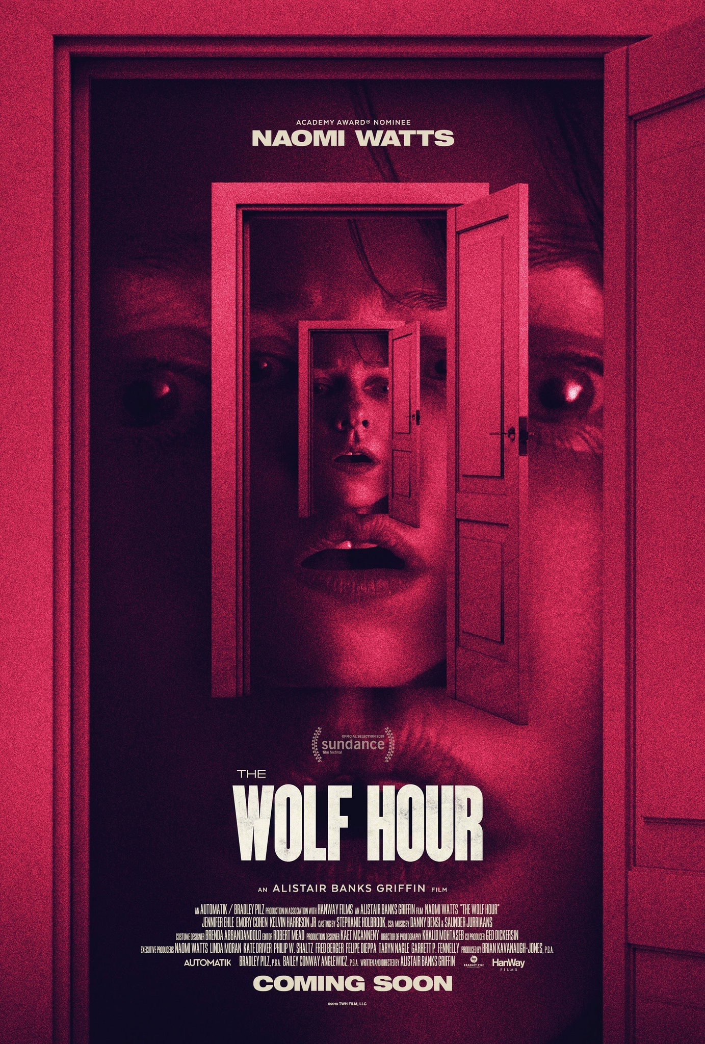 Vilko valanda (2019) / The Wolf Hour