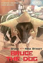 Bruce the Dog: Sad Day