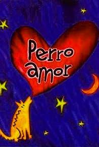 Primary photo for Perro amor