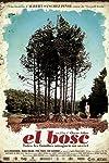 El bosc (2012)