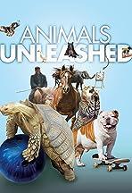 Animals Unleashed