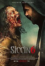 Siccin 6 Poster