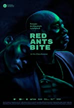 Red Ants Bite