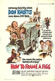 How to Frame a Figg