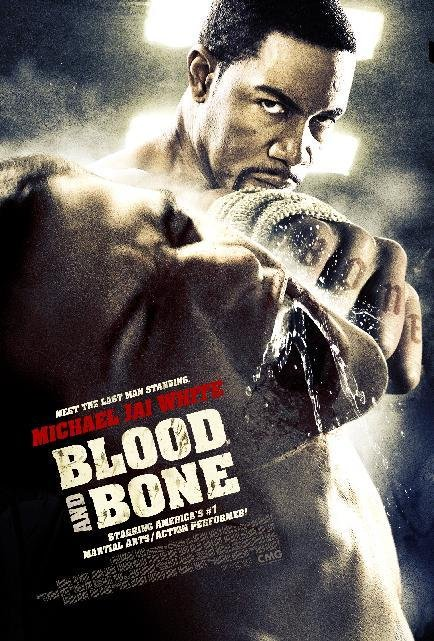 Blood and Bone (2009) Dual Audio Hindi 300MB BluRay 480p x264 ESubs