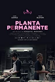 Planta permanente (2019)
