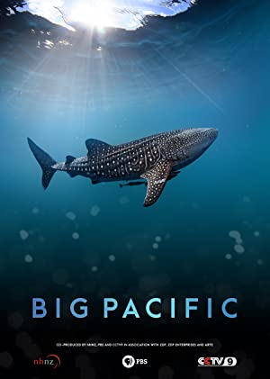 Where to stream Big Pacific