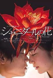 Flower of Shanidar Poster