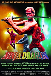 The Ninja Dragon