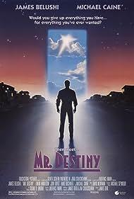 Mr. Destiny (1990)