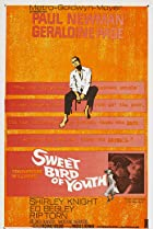 Sweet Bird of Youth (1962) Poster