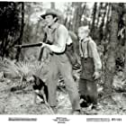 Gregory Peck and Claude Jarman Jr. in The Yearling (1946)