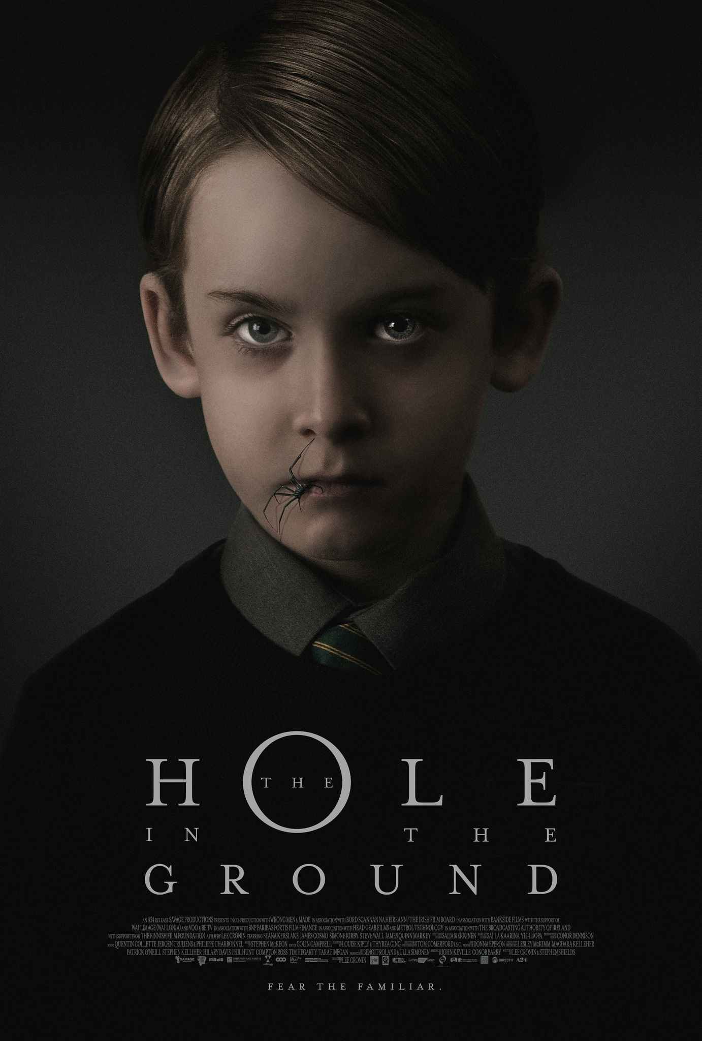 The Hole in the Ground (2019) - IMDb