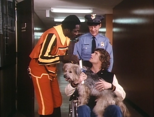 Patrick Cassidy, Meadowlark Lemon, and Johnny the Dog in Here's Boomer (1980)