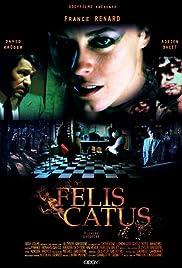 Félis Catus Poster