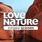 Nature (1982)