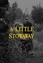 A Little Stowaway