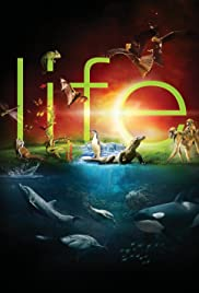 Image result for life 2009 poster