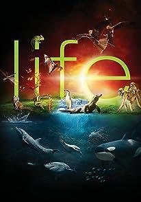 Life-