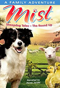 Primary photo for Mist: Sheepdog Tales