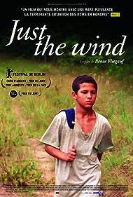 Csak a szél (2012) Poster - Movie Forum, Cast, Reviews