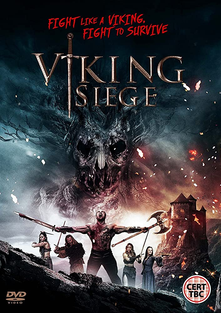 Vikings Siege (2017) Dual Audio Hindi 720p WEB-DL 650MB Download