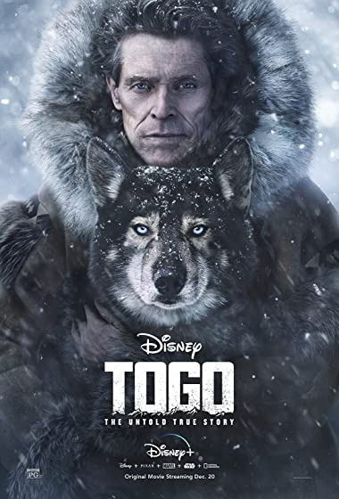 Poster of Togo 2019 Full English Free Download Watch Online In HD Movie Download 480p HDRip