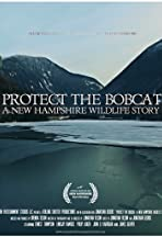 Protect the Bobcat: A New Hampshire Wildlife Story
