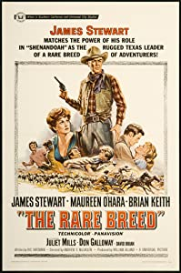 Divx movies torrent free download The Rare Breed James Neilson [480i]