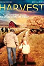 Harvest for the Heart (1994) Poster