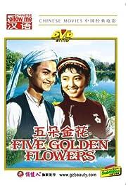 Wu duo Jinhua Poster