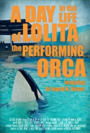 A Day in the Life of Lolita the Performing Orca, featuring Dr. Ingrid N. Visser Poster