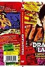 L'urlo di Chen terrorizza ancora l'occidente - Dragonland (2008) Poster