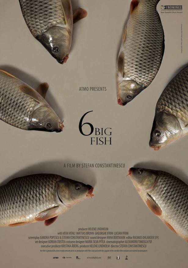 6 stora fiskar (2013)